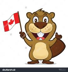BEAVER EXCITED CANADAA